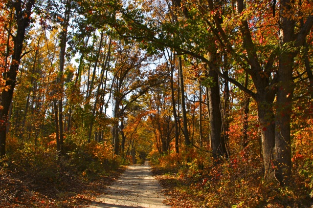 Porter County Indiana