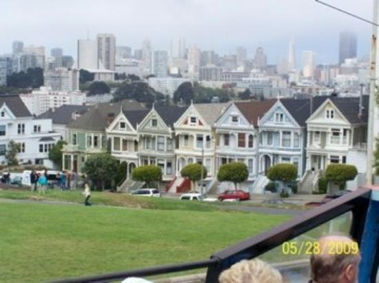 Painted ladies 2