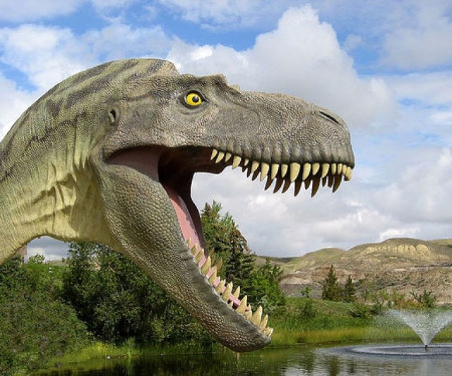 Dinosaur3