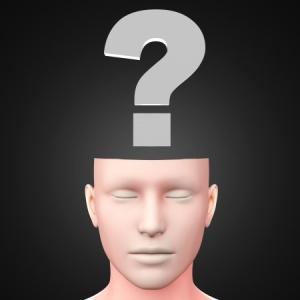 Questioning Brain