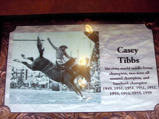 Casey Tibbs