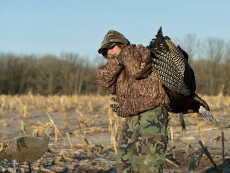 27886004 - wild turkey hunter